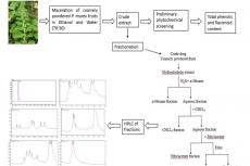 Phytochemical Analysis and Standardization of Pedalium murex Linn. Extract through HPLC Methods